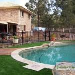 Walters poolside lawn