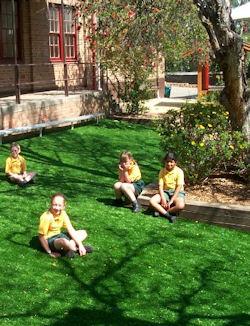 school-grass